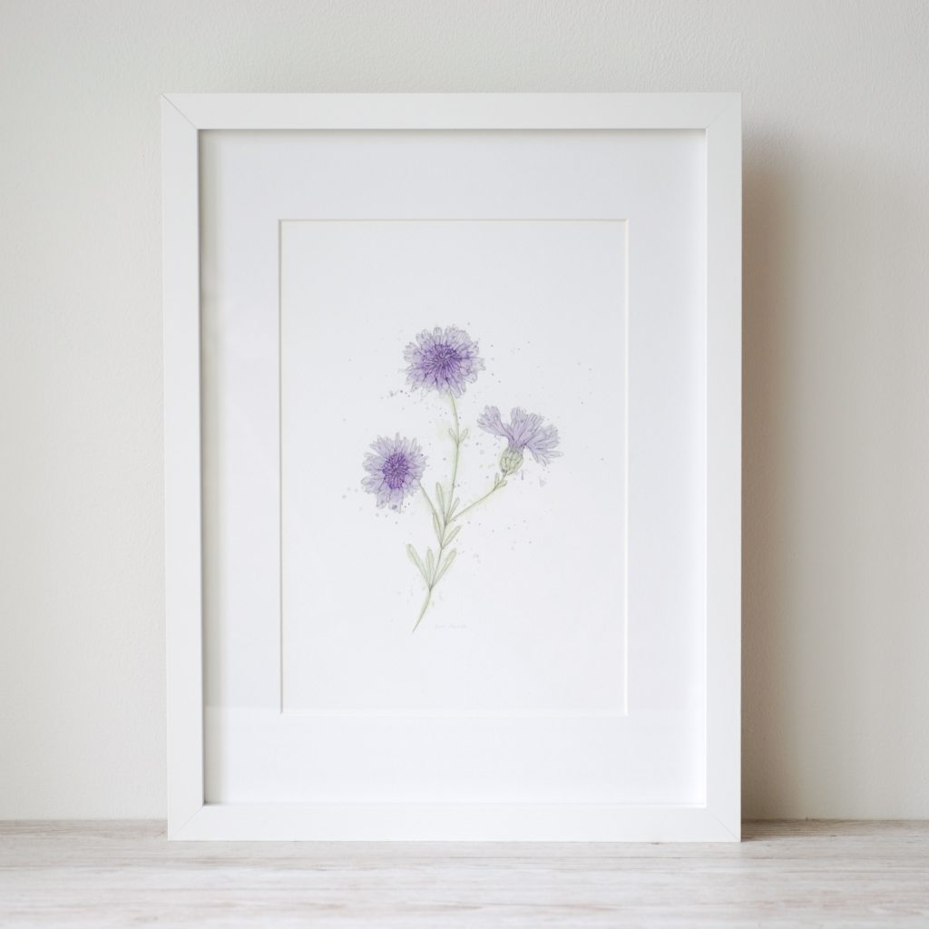 Watercolour and ink cornflower painting art print by Kerri Awosile