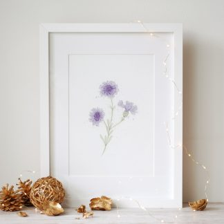 Watercolour and ink cornflower painting art print by Kerri Awosile with lights