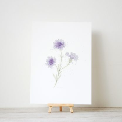 Watercolour and ink cornflower painting art print by Kerri Awosile on stand