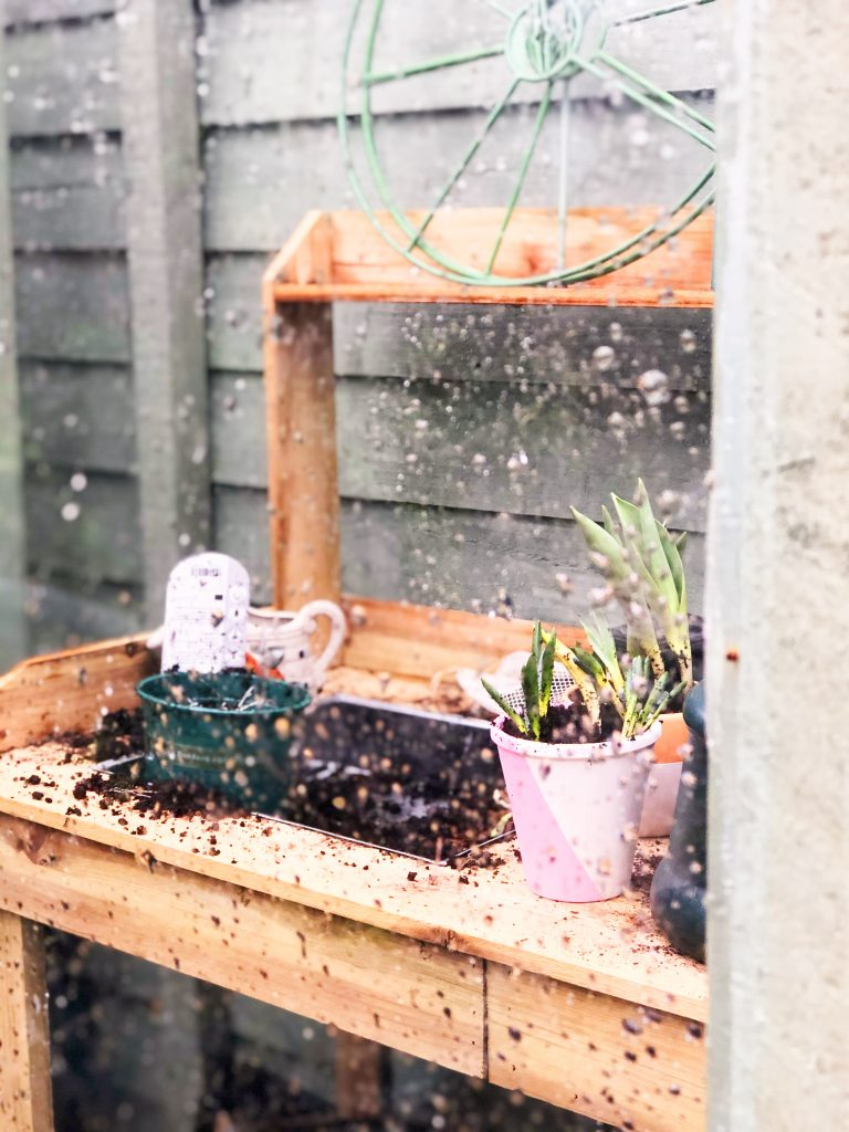 rain on greenhouse glass with plants inside by Kerri Awosile