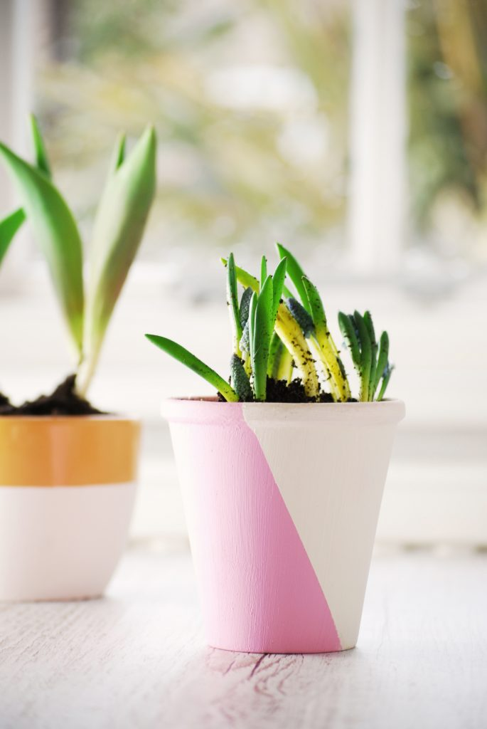 simple and stylish pink, white, and orange stripe block diagonal line, hand painting plant pots creative DIY project by Kerri Awosile