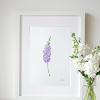 framed original watercolour purple stock flower painting by Kerri Awosile
