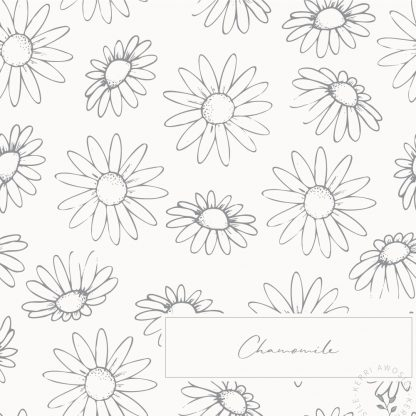 British Wildflowers downloadable illustrations and patterns bundle by Kerri Awosile - Chamomile pattern
