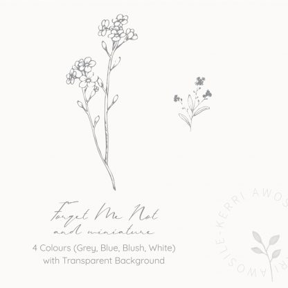 Forget Me Not illustrations by Kerri Awosile