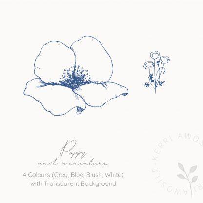 Poppy illustrations by Kerri Awosile