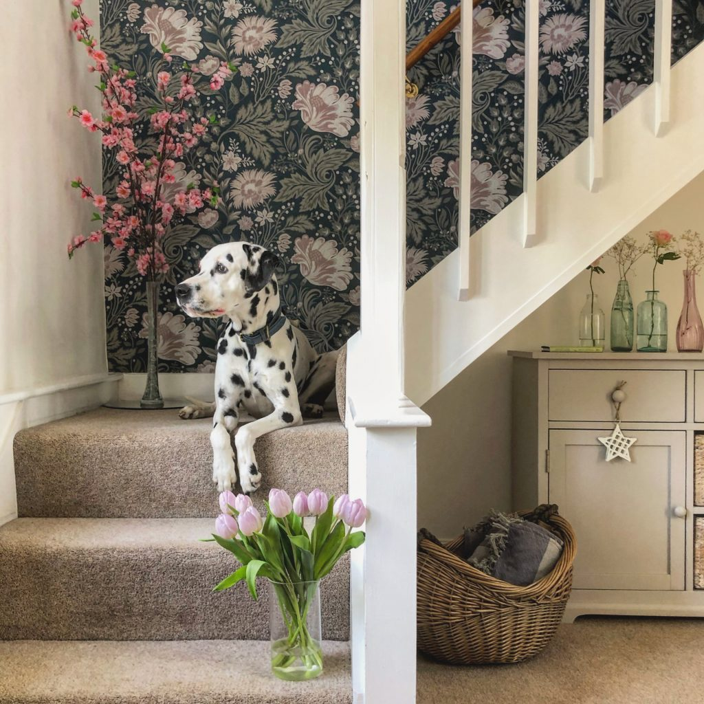 Clare's Country Cottage Staircase with Dalmatian